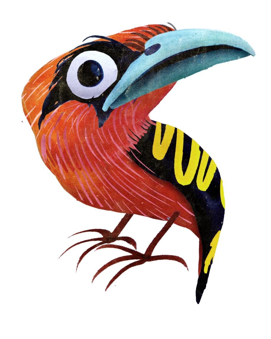 les animaux hauts en couleur de brendan wenzel